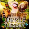 JungleTuesday開催!火曜日はお得なアニパラへ!2020/01/21